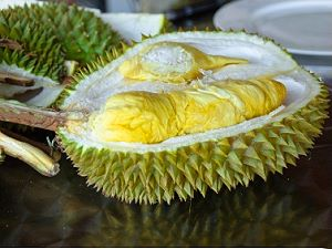 Durians - fruit exotique