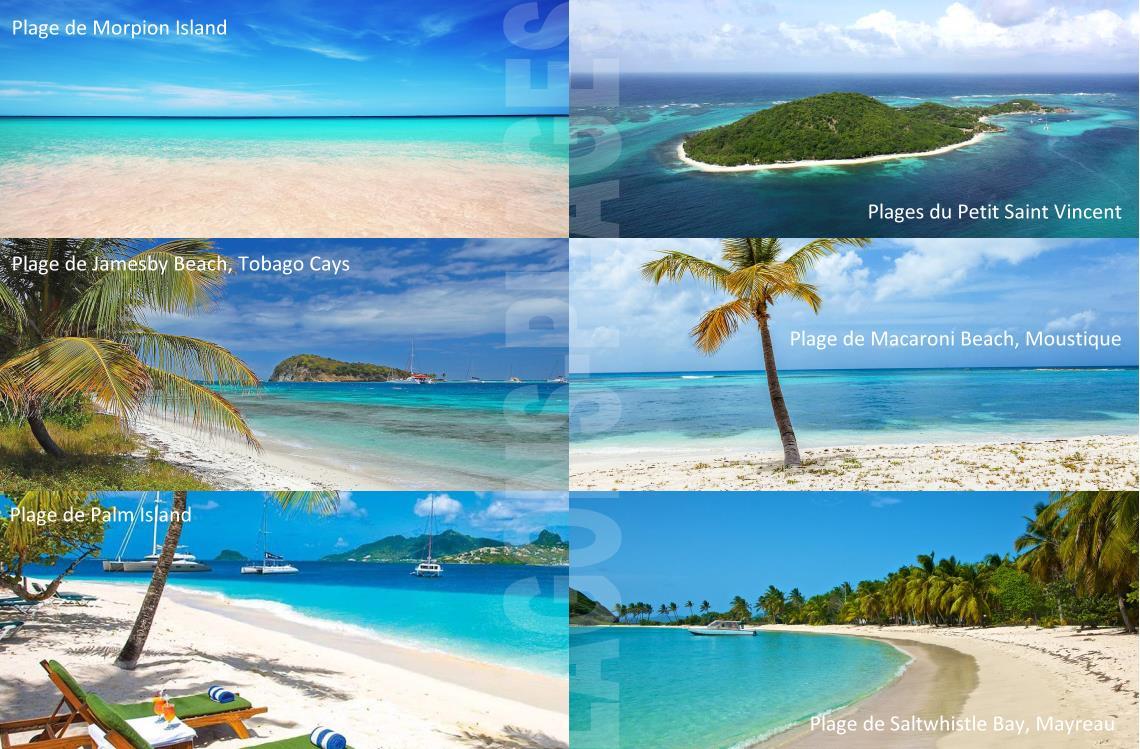 Plages des Grenadines / Moustique et St Vincent