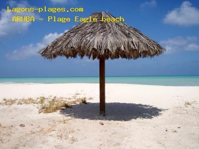Les passionnés des plages et des lagons