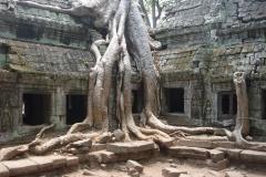 Cambodge, Angkor Vat / Angkor Tom