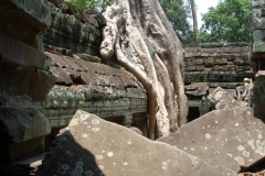 Angkor Tom, Angkor Vat, Cambodge