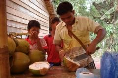 Cambodge, Noix de coco