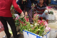 Cambodge, marché, fleurs