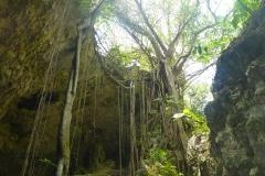 Cuba, Grotte de Saturne, Cueva de Saturno