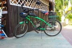 Cuba, vélo, moto