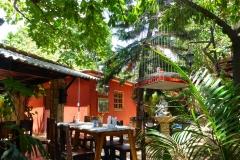 Cuba, La Havane, restaurant, paladares