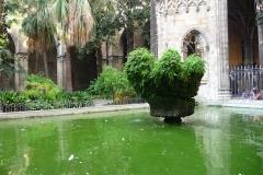 Espagne, Barcelone, Cloitre