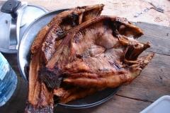 Guyane, poissons
