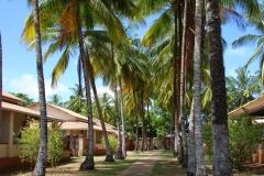 Guyane, hôtel