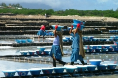 Ile Maurice, Tamarin, récolte du sel