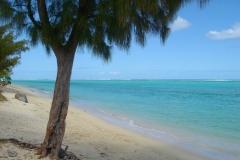 Ile Maurice, plage, lagon, turquoise