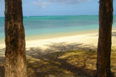 Ile Maurice, Mont Choisy, plage, lagon