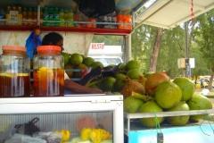 Ile Maurice, Mont Choisy, camion, cuisine, déjeuner