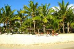 Ile Maurice, cocotier, plage, Wolmar