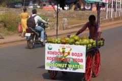 Goa, Inde, vendeur, coco