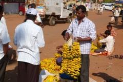 Pattadakal Aihole, Inde, fleur
