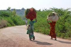 Pattadakal Aihole, Inde, champ