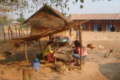 Laos, campagne