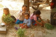 Laos, campagne, enfant