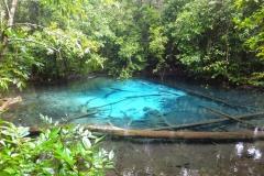 Emerald pool, Khao Phra Bang, Khram, Krabi, Thaïlande
