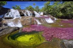 Rivière aux 7 couleurs, Caño Cristales, Sierra Macarena, Colombie