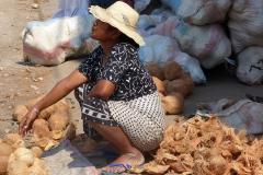 Madagascar, femme, vendeur, noix de coco