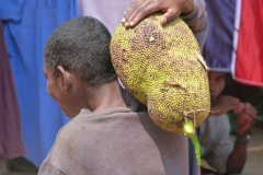 Madagascar, homme, fruit