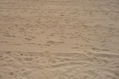 Majorque, Iles Baléares, Espagne, Magaluf, sable
