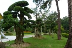Malaisie, jardin