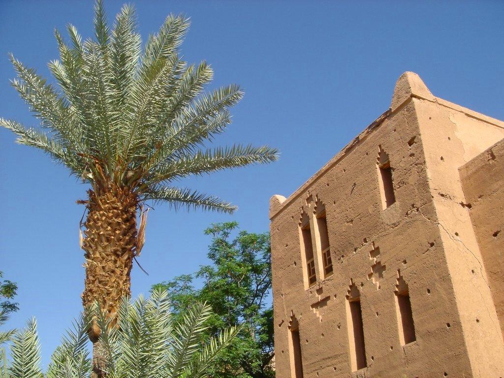Photos Du Grand Sud Marocain Ouarzazate Col De Tichka