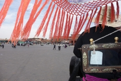 Maroc, Marrakech, calèche, promenade