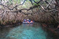 Mexique, Riviera maya, parc Xel-Ha, rivière bleue