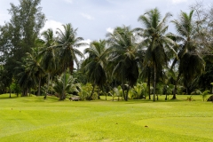 Ile des Seychelles