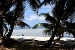 Ile des Seychelles plage
