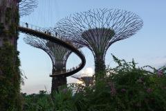 singapour-asie-61