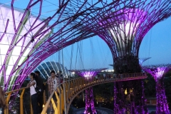 Singapour, Jardins de la Baie, Gardens by the Bay