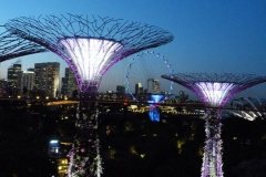 Singapour, Jardins de la Baie, Gardens by the Bay