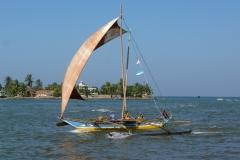 Sri Lanka, Pêcheurs et poissons