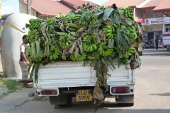 Sri Lanka Camion de bananes vertes