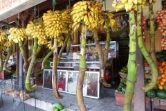 Sri Lanka bananes à vendre
