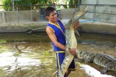 Thaïlande, île Koh Samui, Ferme aux crocodiles