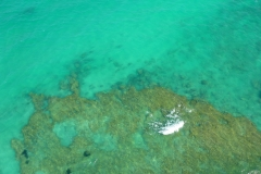 Tunisie, Djerba, vue aérienne mer turquoise coté Yati beach