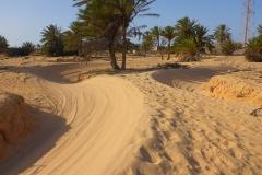 Tunisie, Djerba piste sable de buggys et quads