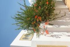 Tunisie, Hammamet Nabeul, maison