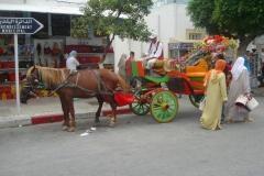 Tunisie, Nabeul cheval et calèche