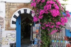 Tunisie, Sidi Bou Saïd, porte bleue