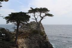 USA, Côte ouest, Monterey