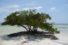 Floride, USA, les Keys, les plages et la mer