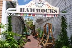 Floride, USA, Key West, hammacs