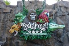 Floride, USA, Orlando, parc Disney, Rainforest Café